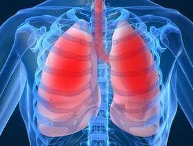 Легкие подвержены многим заболеваниям