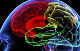 Обследование мозга человека