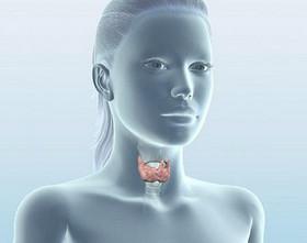 Щитовидной железе надо уделять должное внимание