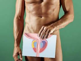 Обследование половых органов мужчины