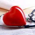 Сосуды сердца на ультразвуковом обследовании